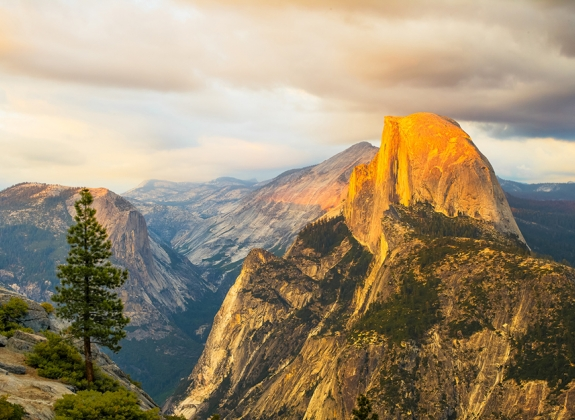 Half Dome Rock Yosemite National Park at Sunset.  A lone tree at