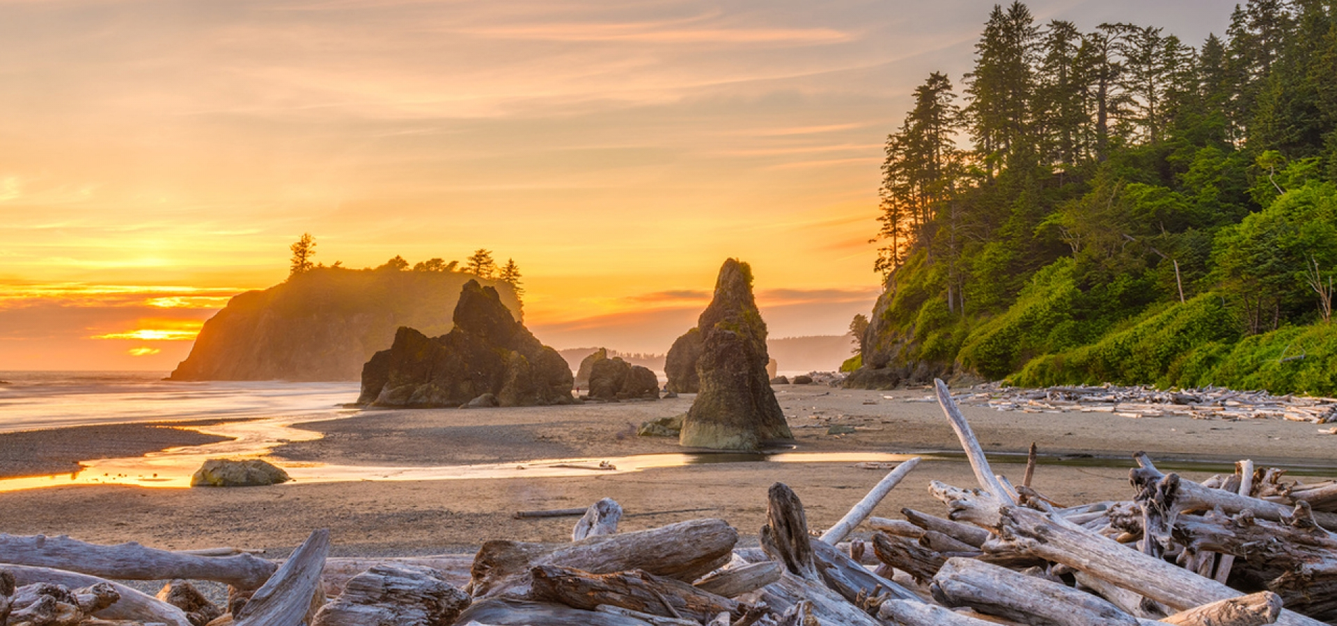 Olympic National Park beach view at sunset