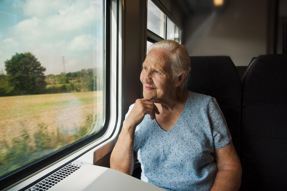 Elderly Woman on the Train