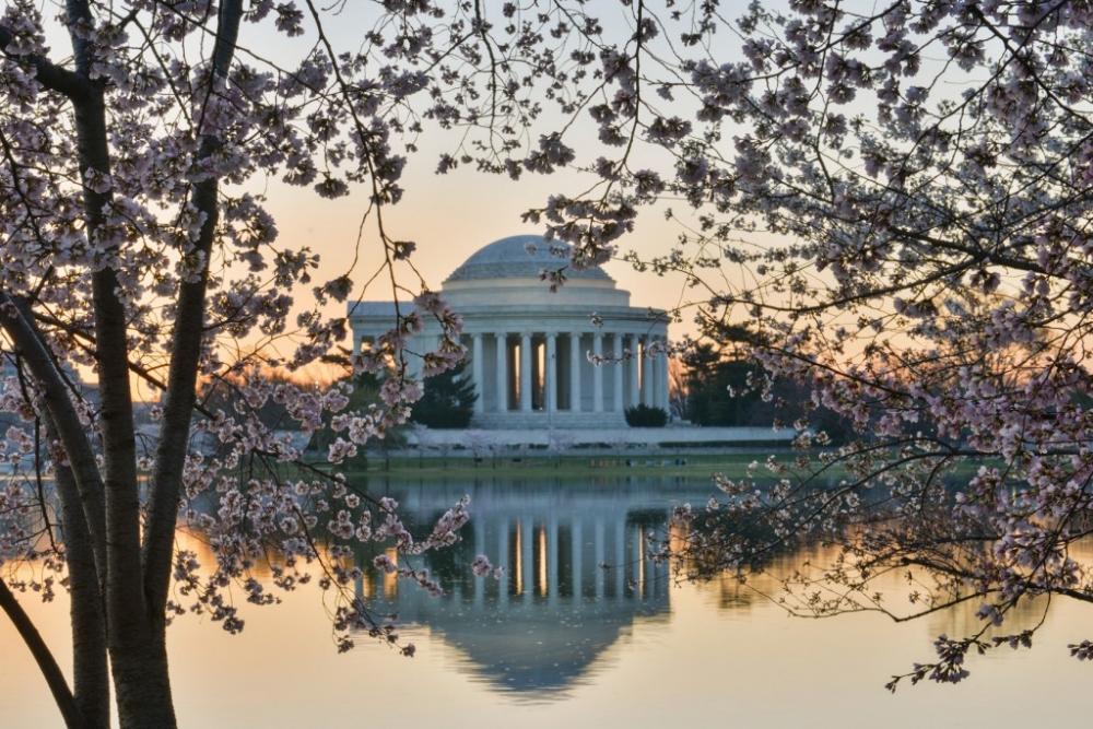 Washington DC - Thomas Jefferson Memorial in Spring
